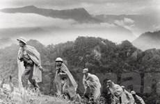Những phụ nữ đi qua khói lửa Trường Sơn