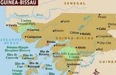 VN kêu gọi củng cố hòa bình ở Guinea Bissau