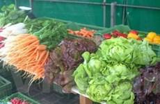 Ăn nhiều rau quả giúp tránh bệnh hen