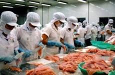 Nhiều cơ hội cho cá tra ở những thị trường lớn