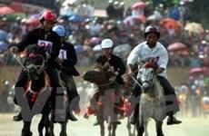 Sẵn sàng cho Giải đua ngựa Bắc Hà mở rộng