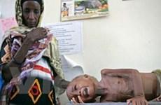 10 khủng hoảng nhân đạo lớn nhất thế giới năm 2008