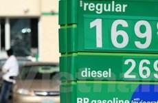 Nhu cầu tiêu thụ dầu mỏ giảm