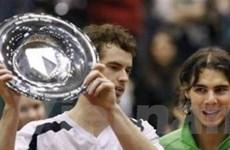 Giải Quần vợt Rotterdam: Murray quật ngã Nadal