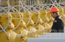 """Gazprom và ENI thúc đẩy dự án """"Dòng chảy phương Nam"""""""