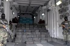 Mỹ và Mexico bắt hàng trăm tội phạm ma túy