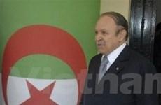 Tổng thống Algeria Abdelaziz Bouteflika tái đắc cử
