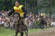Lào Cai: Từng bừng Giải đua ngựa Bắc Hà 2009