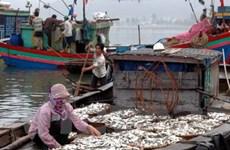 Hơn 2.300 tỷ đồng giúp ngư dân vươn khơi