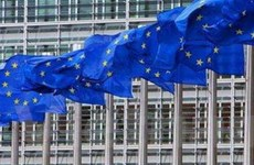 """Quốc hội Iceland """"bật đèn xanh"""" cho việc gia nhập EU"""
