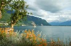 Tiết kiệm năng lượng bằng nước hồ Geneva