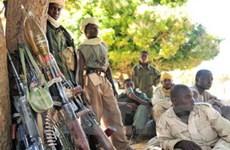 Tư lệnh UNAMID: Chiến tranh ở Darfur đã kết thúc