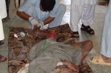 EU lên án vụ không kích của NATO ở Afghanistan