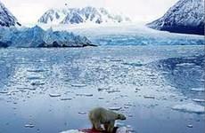 Băng ở Greenland và nam cực mỏng nhanh chóng