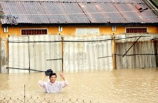 Các địa phương khắc phục hậu quả bão số 11