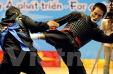 Việt Nam đứng thứ nhì toàn đoàn tại AI Games III