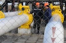 """Nga cắt nguồn cung nếu Ukraine """"ăn cắp"""" khí đốt"""