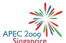 Chủ tịch nước rời Hà Nội dự hội nghị APEC 17