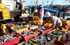 Ngăn chặn hoạt động khai thác thủy sản bất hợp pháp