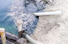 Vi phạm về môi trường bị phạt tới 500 triệu đồng