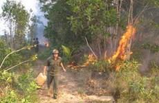 Bắc Kạn: 10 vụ cháy, gần 11ha rừng đỏ lửa