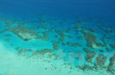Tàu Trung Quốc bị tràn dầu ra biển của Australia