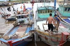 Vùng tâm bão số 1 sẽ vào tỉnh Hải Phòng, Nghệ An