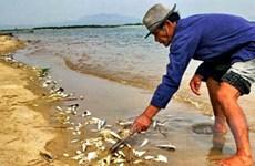 Chưa có kết luận về vụ xả thải xuống sông Trà Khúc