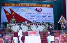 Ông Hà Sơn Nhin tái cử làm Bí thư Tỉnh ủy Gia Lai