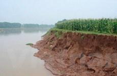 Hà Nội chi 22 tỷ đồng để chống sạt lở bờ sông Đáy