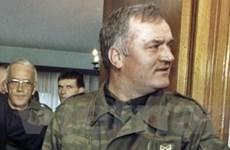Ratko Mladic đủ sức khỏe để dẫn độ tới The Hague