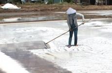 Diêm dân chán nghề, lượng muối sụt giảm mạnh