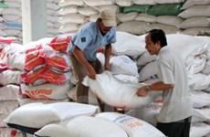 Nhà xuất khẩu gạo Thái nhắm tới nguồn cung từ VN