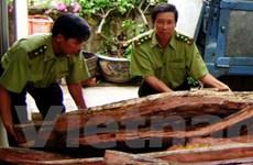 Việt Nam hợp tác chống buôn bán gỗ bất hợp pháp