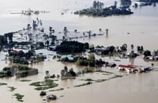 Sóc Trăng, Đồng Tháp đối phó lũ lụt, triều cường