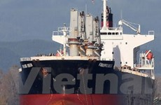 Vẫn chưa thể liên lạc với con tàu Vinalines Queen
