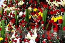 Hoa tươi đậm màu sắc Việt Nam trên đất nước Lào