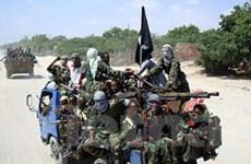 Phong trào cực đoan Shebab gia nhập Al-Qaeda