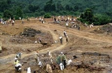 Nhức nhối nạn khai thác vàng lậu tại mỏ Bông Miêu