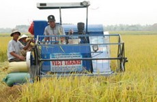 Ninh Bình: 21.000 tỷ đồng để phát triển nông nghiệp