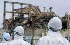 Nhật Bản: Thấy chất phóng xạ vượt ngưỡng ở 10 tỉnh