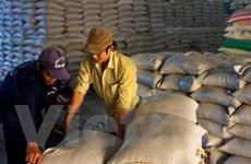 Đồng bằng sông Cửu Long xuất 4,6 triệu tấn gạo