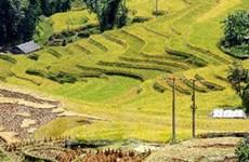 Phát triển du lịch Tuyên Quang và các tỉnh Đông Bắc
