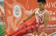 Hà Nội dẫn đầu giải thể dục dụng cụ vô địch QG 2012