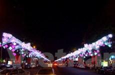 TP.HCM rộn ràng vào mùa lễ hội chào năm mới 2013