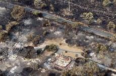 Australia: Cháy rừng lan rộng, hơn 100 người mất tích