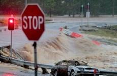 Australia huy động quân đội tham gia chống lũ lụt