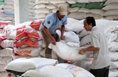 """Siết """"cứng"""" đầu mối xuất gạo: Thiệt cả DN, nông dân"""