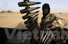 EU cử phái bộ quân sự huấn luyện quân đội Mali