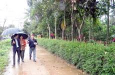 JICA hỗ trợ phát triển du lịch ở làng cổ Phước Tích